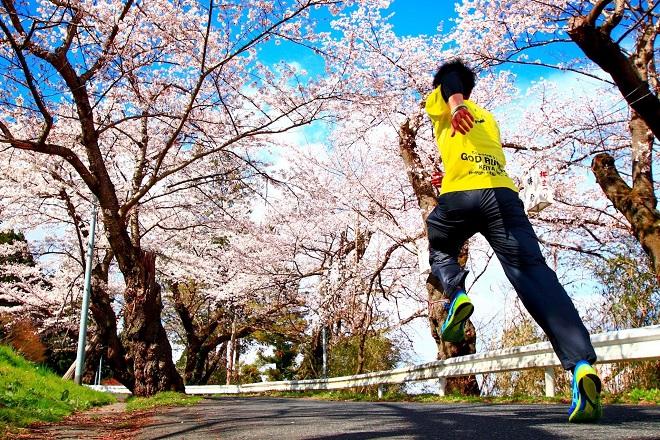 「いわて県南レジェンドランナーズ17」第1戦オンライン企画「お花見RUN」を開催!